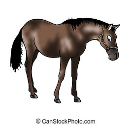 Brown horse - Cute brown horse isolated on white background...