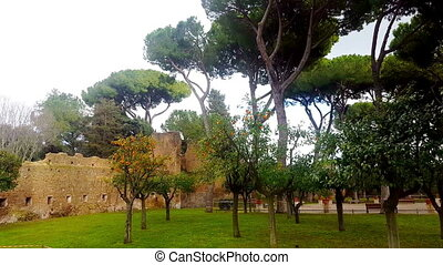 The Roman Forum, Roman landmark, the ruins - Rome, orange...