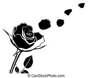 silhouette of the flower with rose petals fly off...