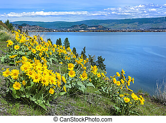 Okanagan Lake Kelowna British Columbia Canada with...