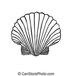 Hand Drawn shell - Black and White doodle illustration....
