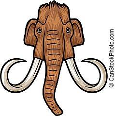 Mamut, głowa,