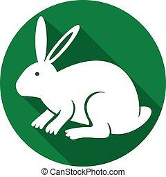 plano, conejo, icono