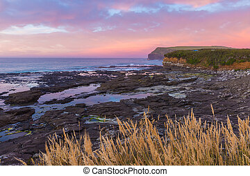 sunset at Curio Bay, the Catlins, New Zealand