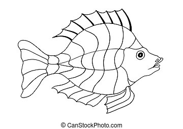 Hand Drawn Fish illustration isolated on white background...