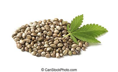 Hemp seeds with a green leaf