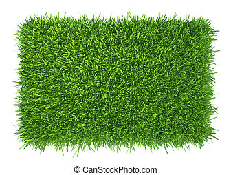 Green grass natural background texture fresh spring green...