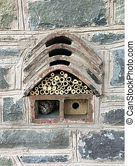 Insect and bee house - Insect house, bug hotel, ladybird and...