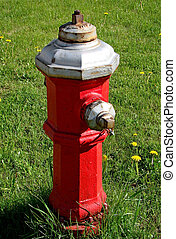 Fire hydrant on grass