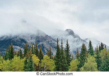 Banff National Park - Banff national park foggy mountains...