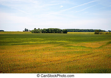 Green lithuanian countryside - View on bright landscape with...