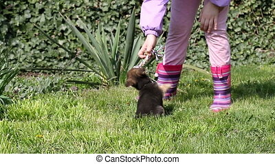 little girl and puppy play