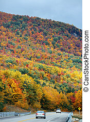 Highway and Autumn foliage in White Mountain, New Hampshire