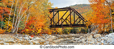Railway bridge in woods with colorful foliage, White...
