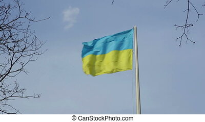 Ukrainian national flag against the blue sky - ukrainian...