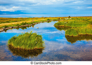 Small pond surrounded by green meadow In the smooth thermal...