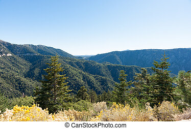 San Bernardino National Forest California USA