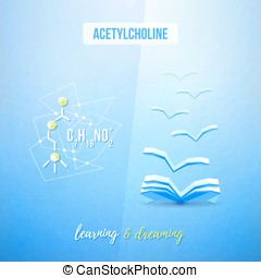 Acetylcholine chemistry low poly educational design Learning...