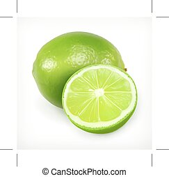 Lime, citrus fruit icon - Lime, citrus fruit vector icon