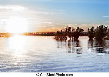 Lake and sunset - Water landscape and dry treesLake and...