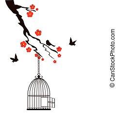 Pássaros, gaiola,