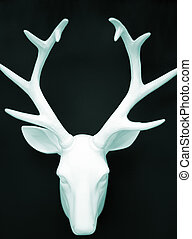 Stag's head antlers on wall - Stags head antlers on wall...