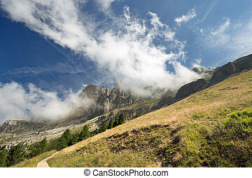 sloping meadow with Dolomites in the background