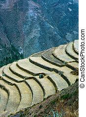 Pisac, Peru - Terracing for agriculture in Pisac, Peru