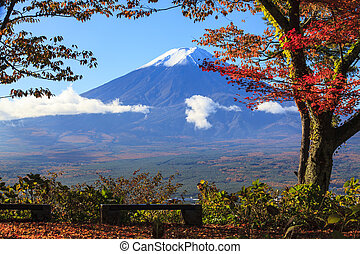 The fall season of Mt Fuji in Japan with nice yellow color