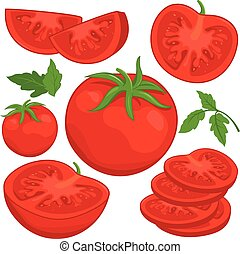 Tomatoes - Vector illustration of whole and sliced ripe...