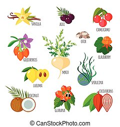 Superfoods in flat style. Healthy lifestyle. Fruits and...