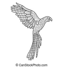 Parrot coloring book for adults vector - Parrot macaw bird...