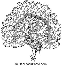 Peacock Coloring vector for adults - Peacock coloring book...
