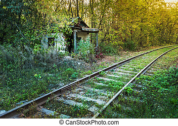 Old abandoned shack stationmaster in the forest