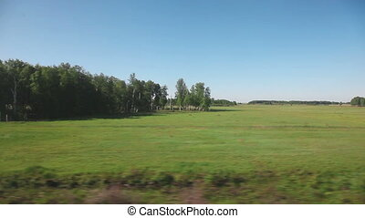Siberian landscape - view from train - View from the window...