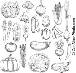 Wholesome farm vegetables sketches set - Organic farm fresh...
