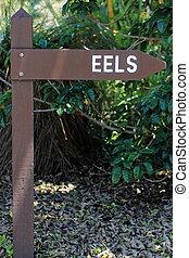 Eel Sign Post