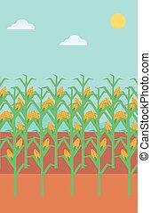Background of corn field. - Background of corn field vector...
