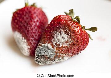 fresas, molde