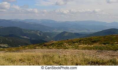 Active woman walks fast in Carpathian Mountains in summer