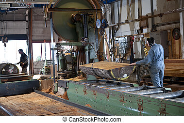 Lumber industry - A man working the main saw in a sawmill