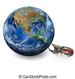 beetle and the earth, including elements furnished by NASA