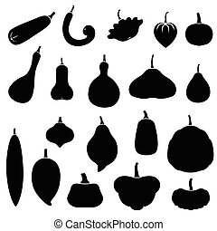 Squashes set - Vector illustrations of silhouette squashes...