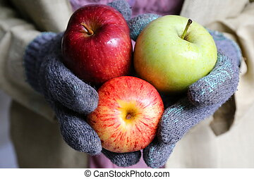gardener hand hold apple