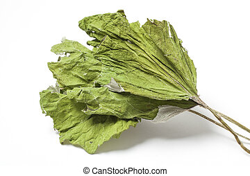 Dried Coltsfoot Leaves on White - Three dried herbs...