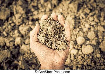 dryness - dry soil in the hand