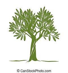 verde, vettore, oliva, albero.,