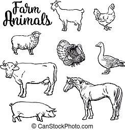 Set of farm animals on the white background - Farm animals,...