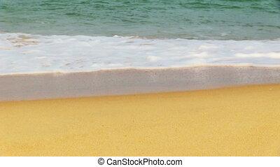 tropical beach - surf on the tropical beach