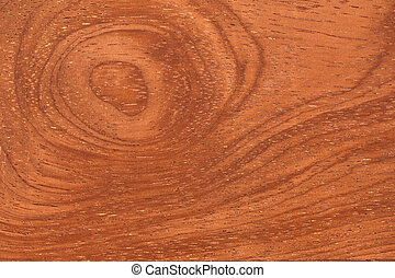 texture of tropical wood